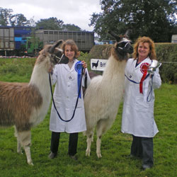 Photo of Amelia and Drizzle, Edenbridge & Oxted Show